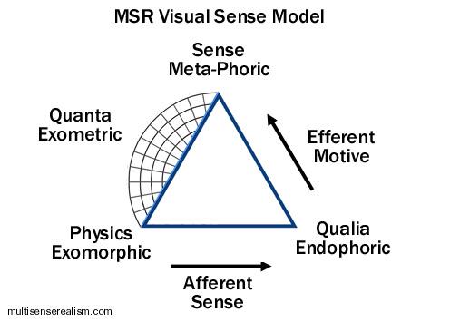 MSR_sensory