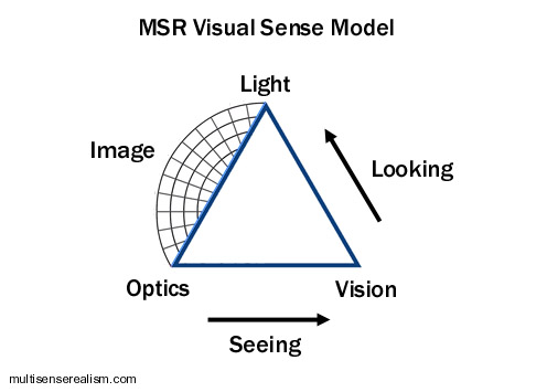 MSR_Visual