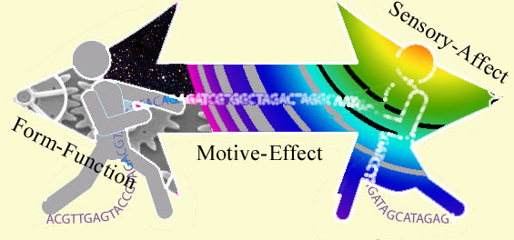 multisense-diametric
