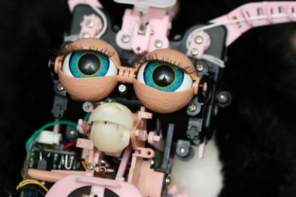 Barebones-Furby-eecue_24150_hxbv_l.jpg